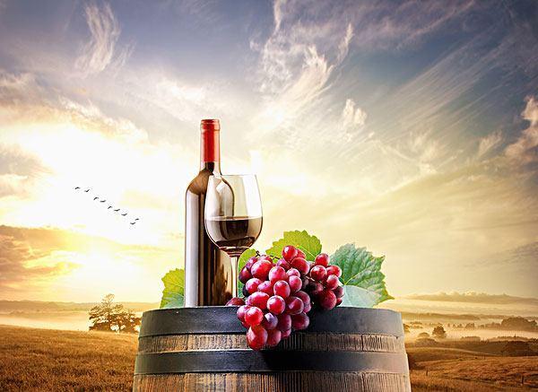 葡萄酒加盟酒庄