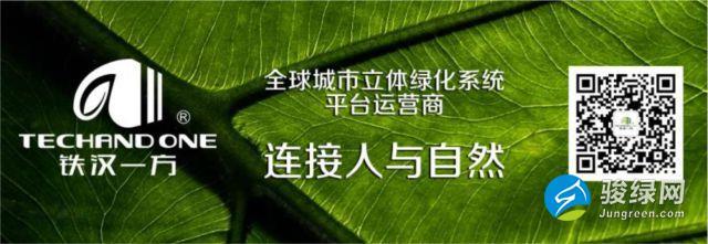 绿色建筑第一直播-骏绿网