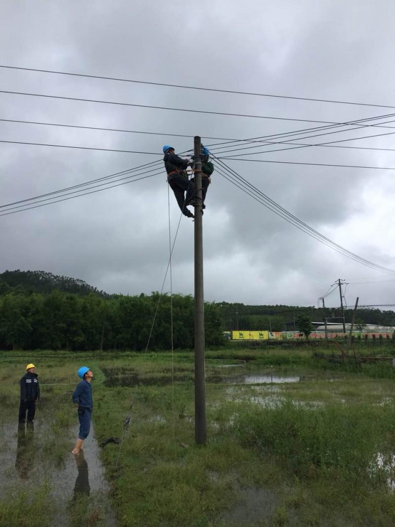 6月9日,海丰黄羌供电所对10千伏黄羌线圳头台区进行灾后修复.jpg