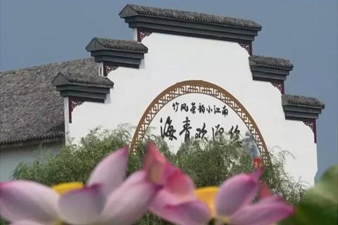 海青3.jpg