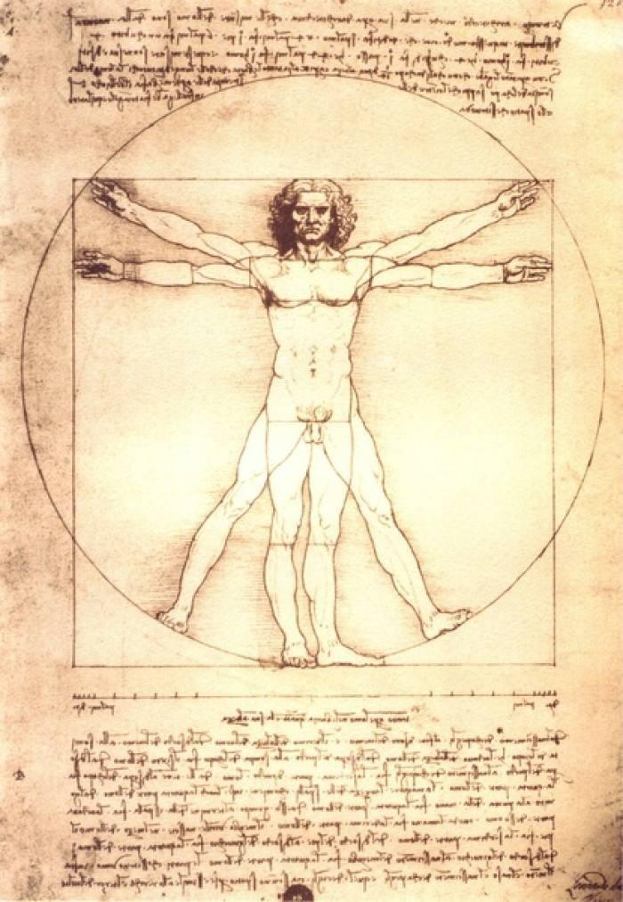 身体解剖图.jpg