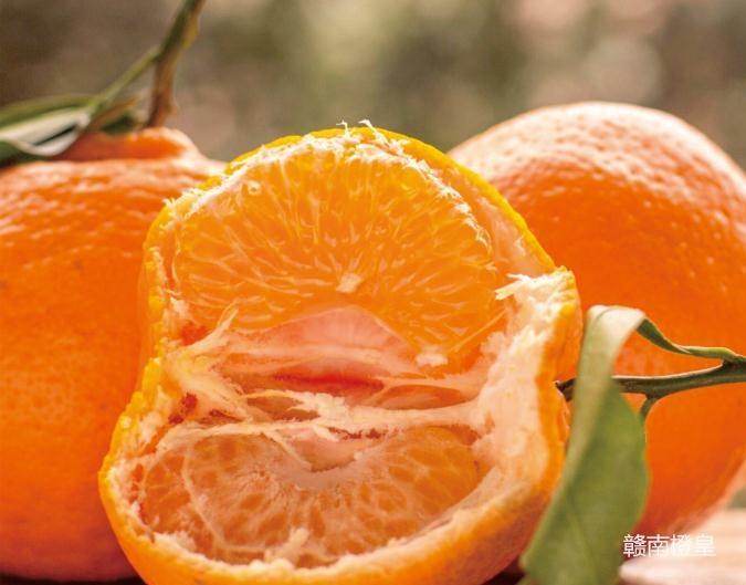 橙皇图片1_20190124090733_看图王.jpg