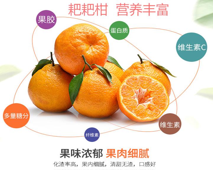 微信图片_20190215110154_看图王.png