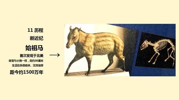 幻灯片19_副本.jpg