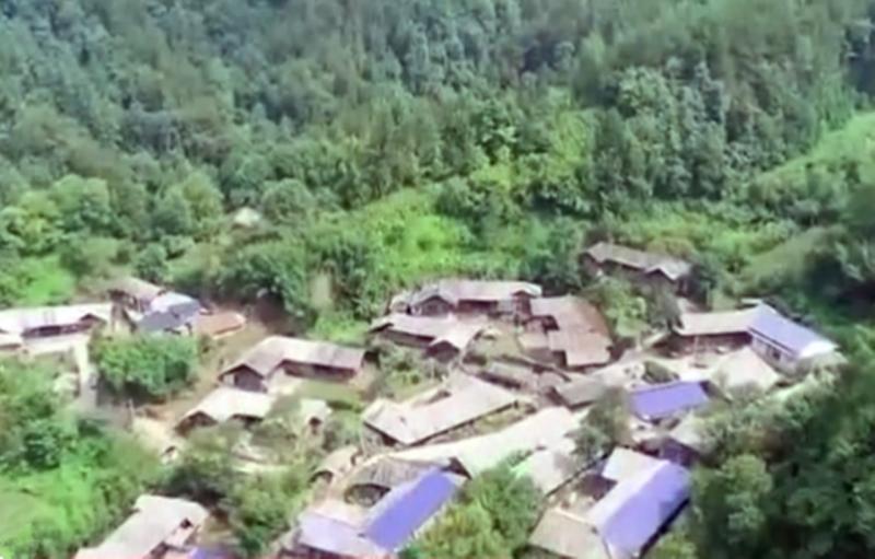陈忆村1.png