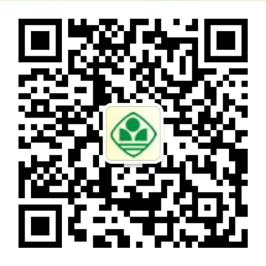 OTSS86kA_5XCP.png