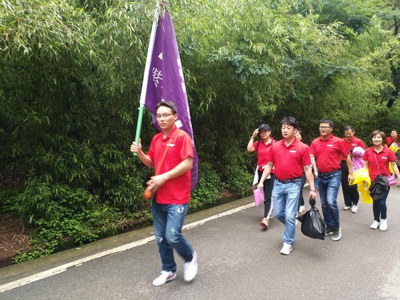 紫苹果公装团队
