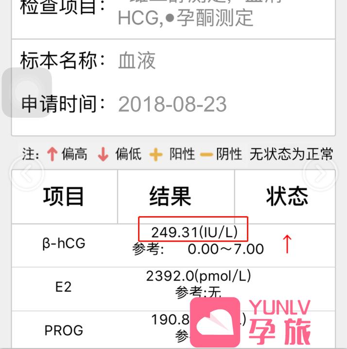 【八月份】孕旅<a href='https://www.yunlving.com/tag/325.html' target='_blank'>海外试管</a>自助平台成功案例汇总