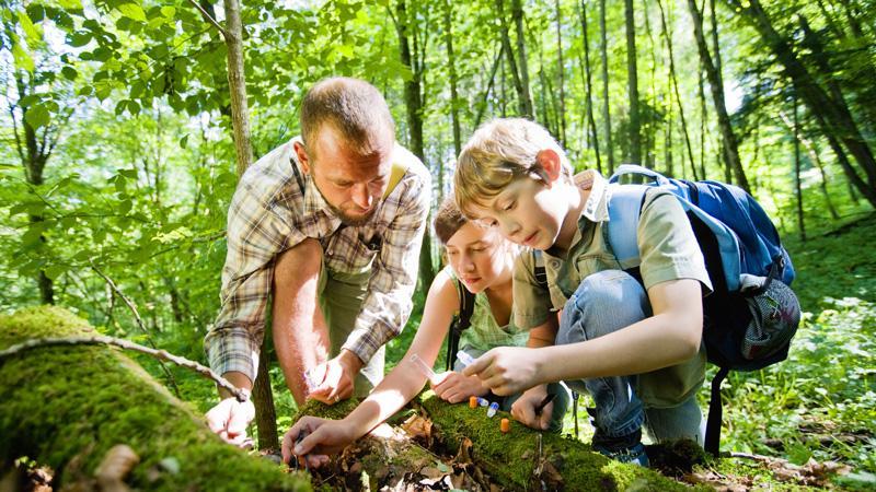 解决问题能力是学习终极目的,聪明的家长都在用五个方法
