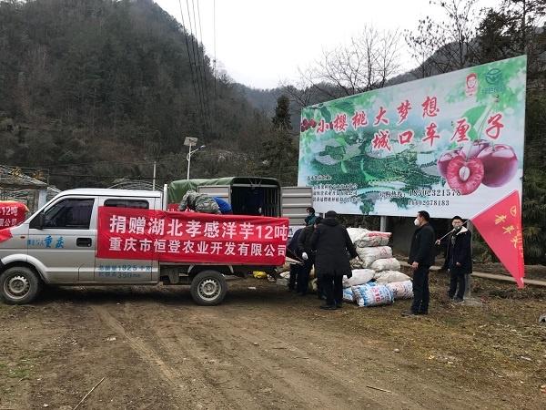恒登农业捐赠车队装车现场.jpg