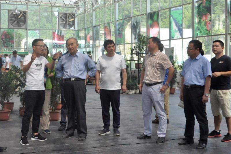 中国工程院调研组到天行健柞水基地调研红豆杉生态效益|企业新闻-陕西省天行健生物工程股份有限公司