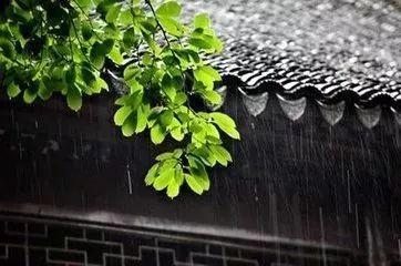梅雨.jpeg