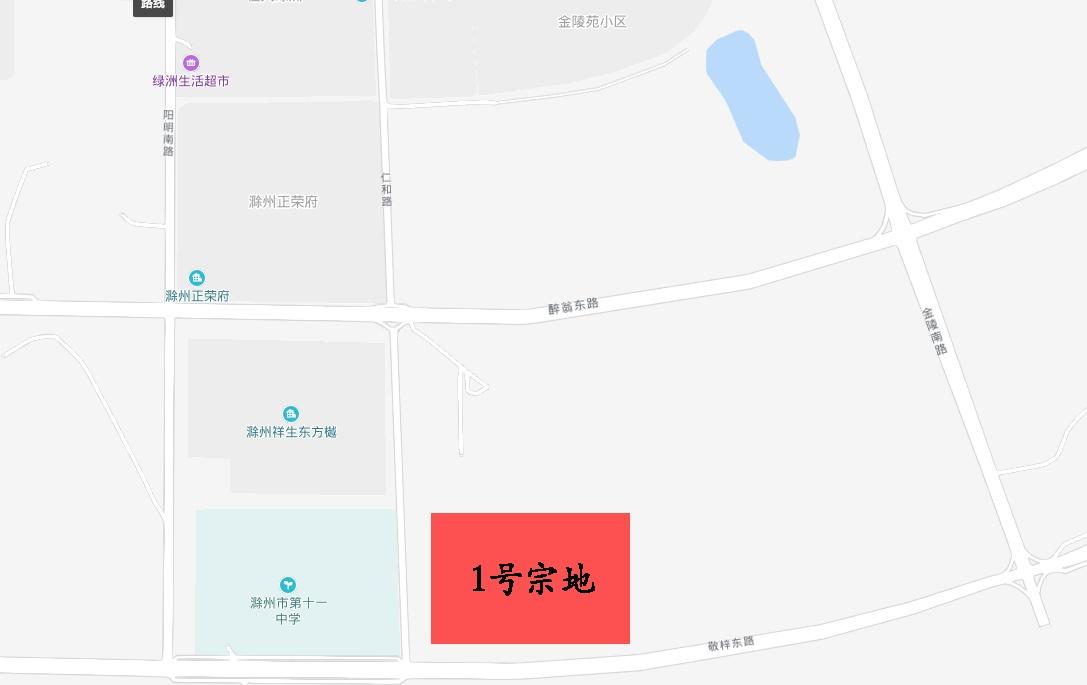 1号宗地地图.jpg
