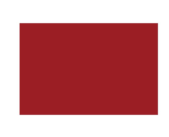 舒莱狮logo.png