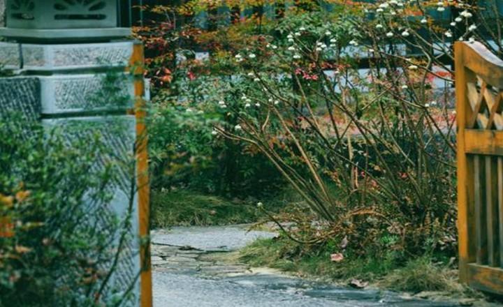 温泉酒店 2.jpg