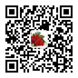 2017中国花卉展览会.jpg