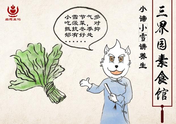 5菠菜.jpg