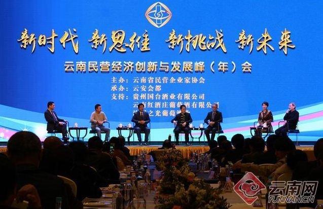 云南民营经济创新与发展峰会在昆明举行.jpg