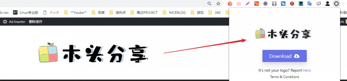 Logo Grabber 一键快速下载网站Logo 的免费插件