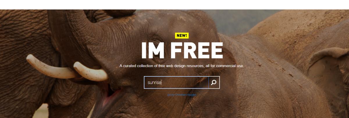 IM Free 免费图库:收录丰富高品质图片,全站图片都可以商业使用!