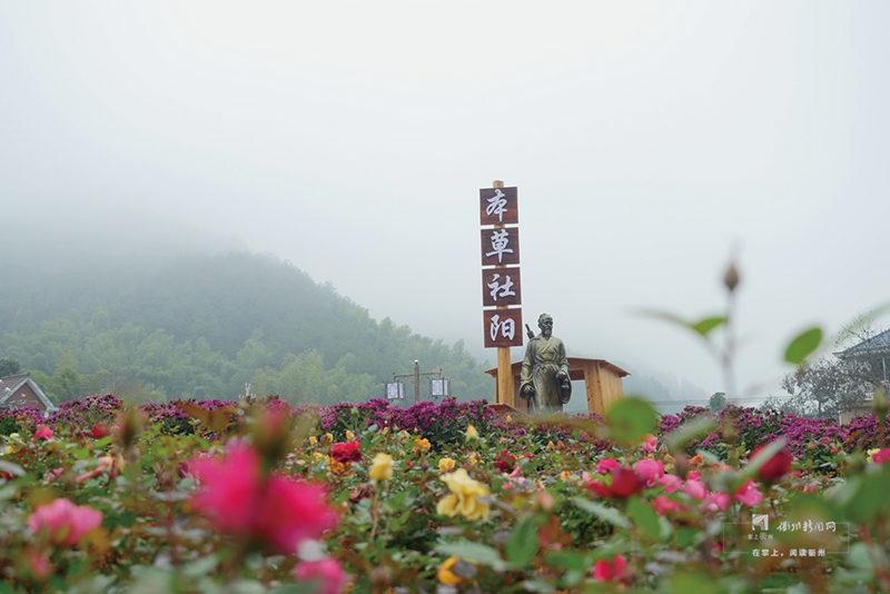 27龙游县社阳乡1.jpg