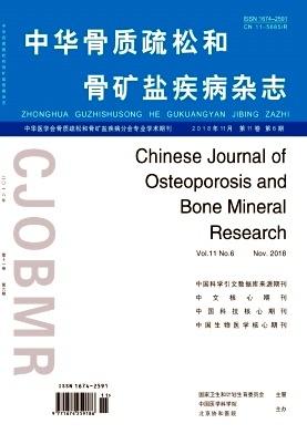 中华骨质疏松和骨矿盐疾病杂志.jpg