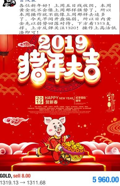 2019猪年大吉.jpg