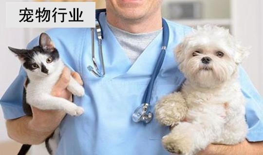 宠物行业三天活动涨粉12000+,经典成功案例【运营指南推出】