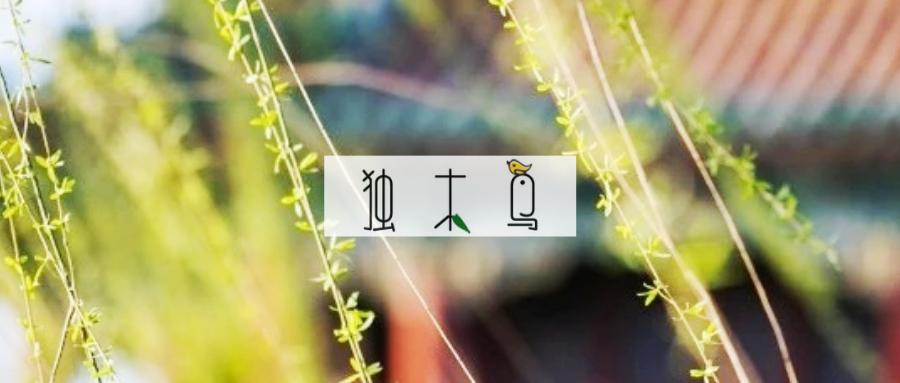 设计 | 独木鸟配图第4辑【云像棉花糖】