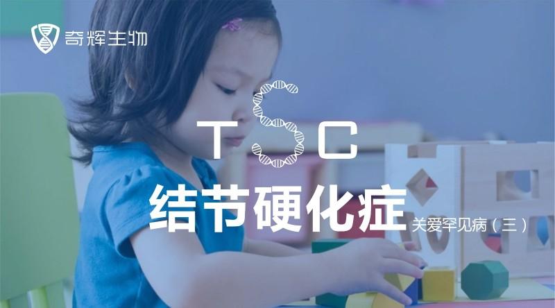 TSC01.jpg
