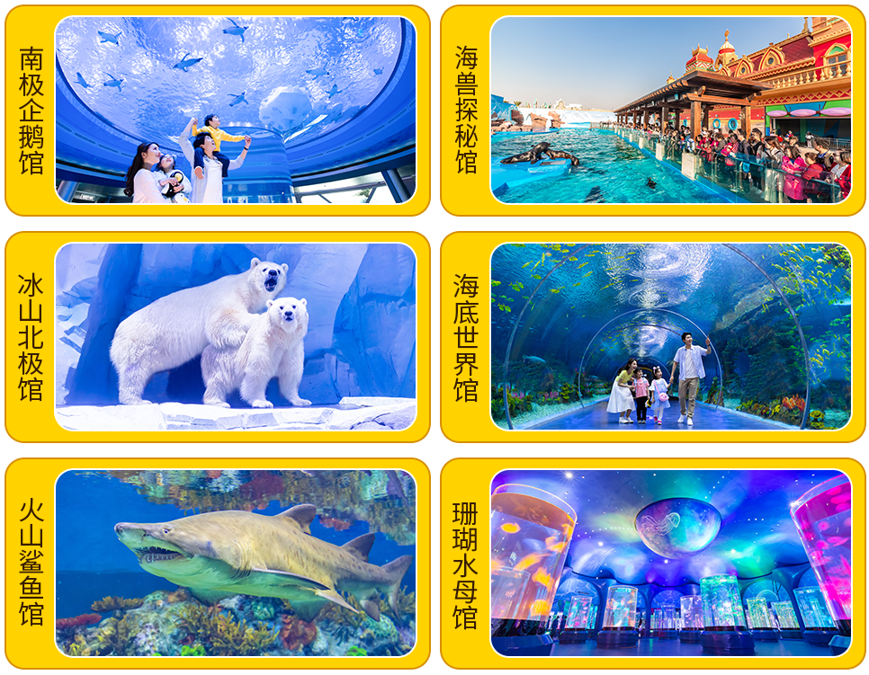 """【""""鲸""""喜四月 空前聚惠】99元起抢购上海海昌海洋公园单人门票,网红亲子打卡圣地!"""