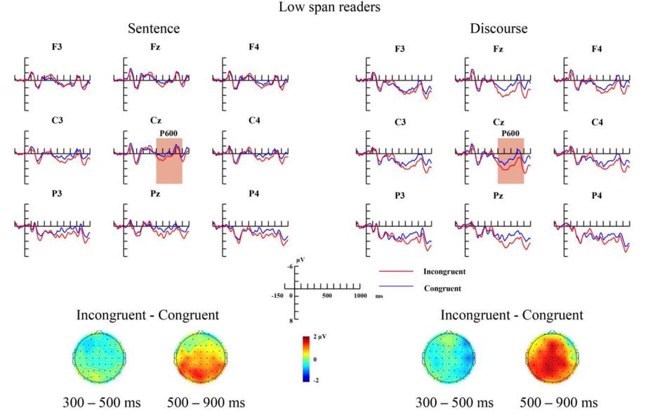 低工作记忆组在句子和语篇水平上诱发的语义不一致效应.png