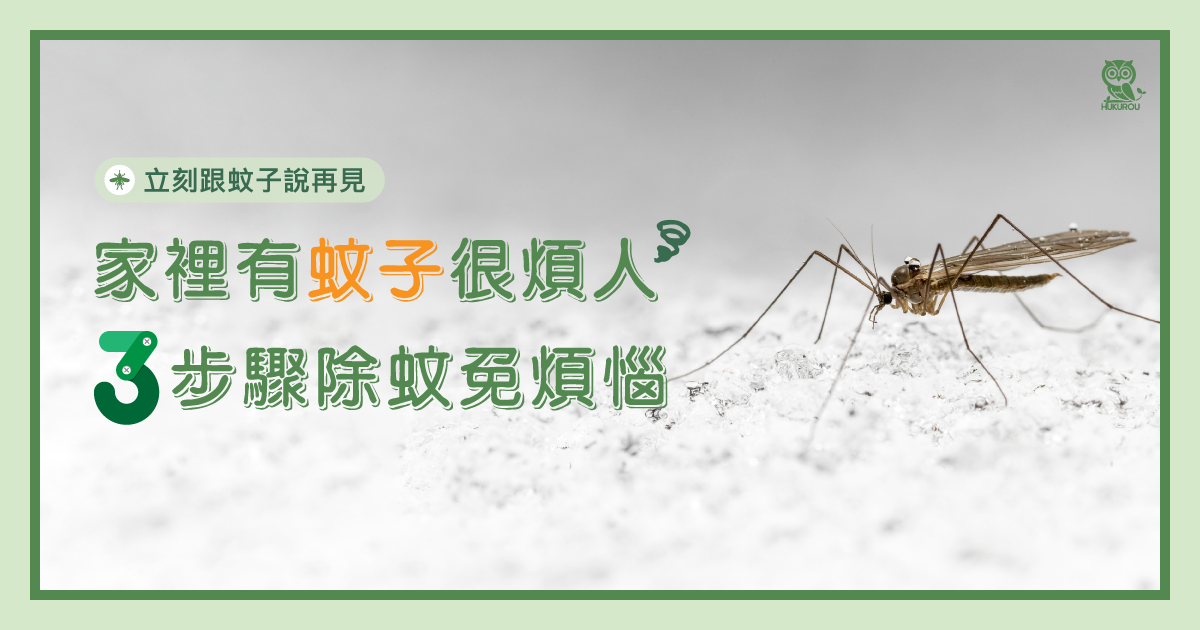 家裡有蚊子很煩人嗎?教你三步驟除蚊子免煩惱