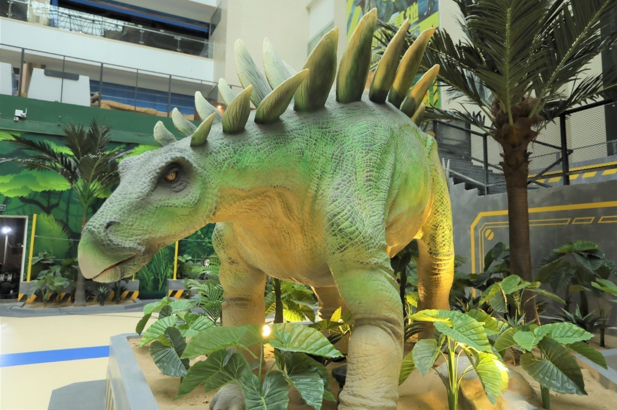 恐龙研究所· (6).JPG