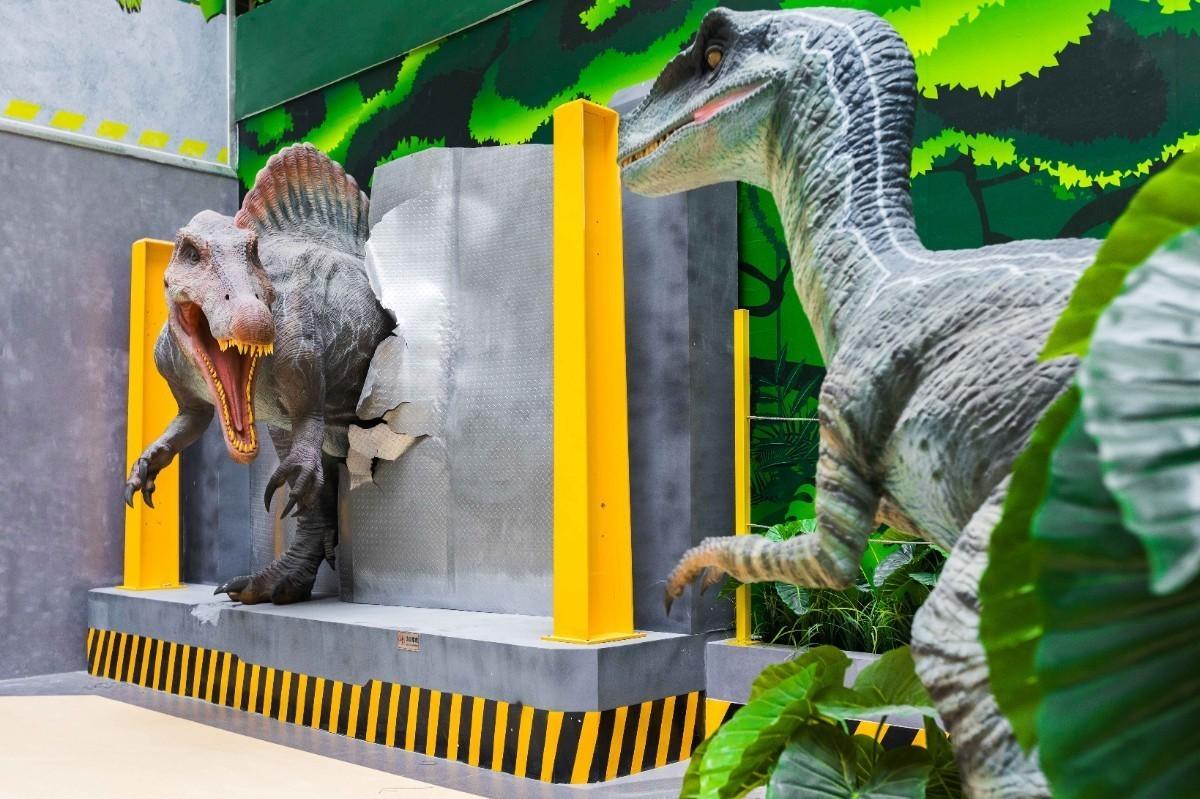 恐龙研究所· (11).jpg