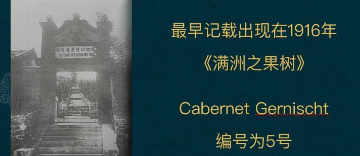 世界蛇龙珠日活动回顾 II 爱上中国葡萄酒-杭州站(图11)