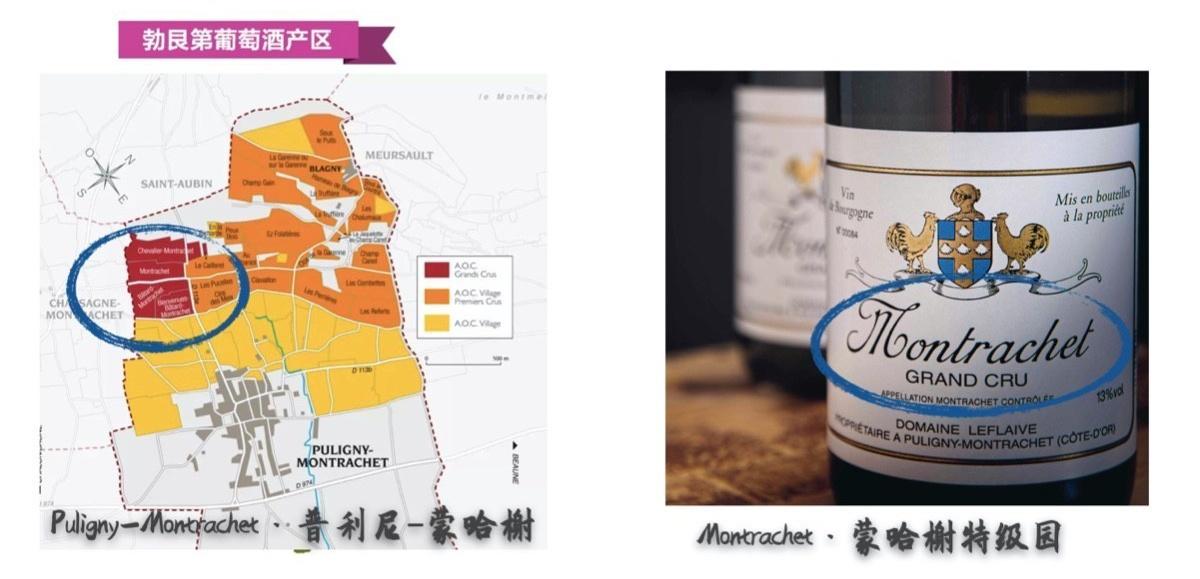 从霞多丽看我们怎么称呼一款葡萄酒(图14)